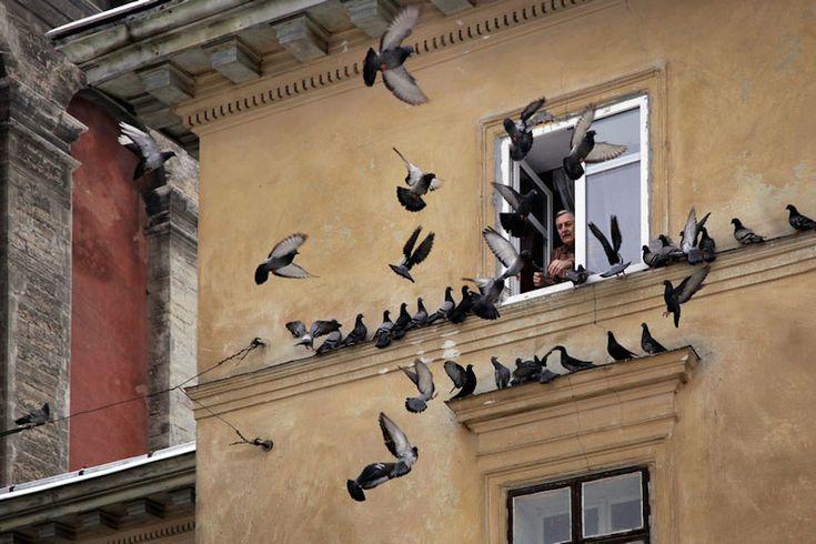 Exquisite Photographs of Saint Petersburg – Fubiz Media