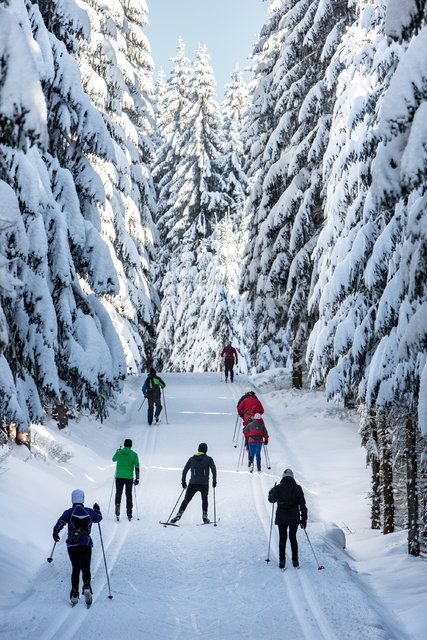 The Jizera Mountains of Central Europe, unknown to many, offer fine Nordic trails.