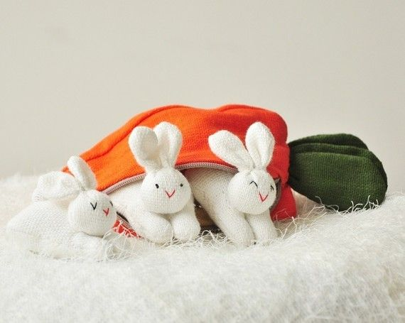 baby bunnies in a carrot case