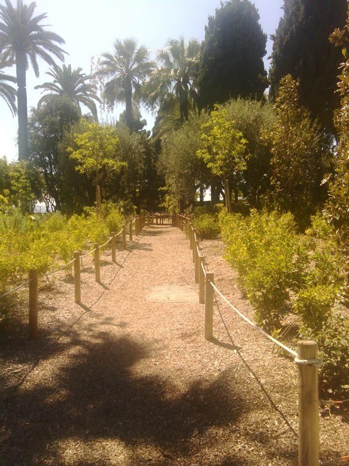 gardens around the Plaza