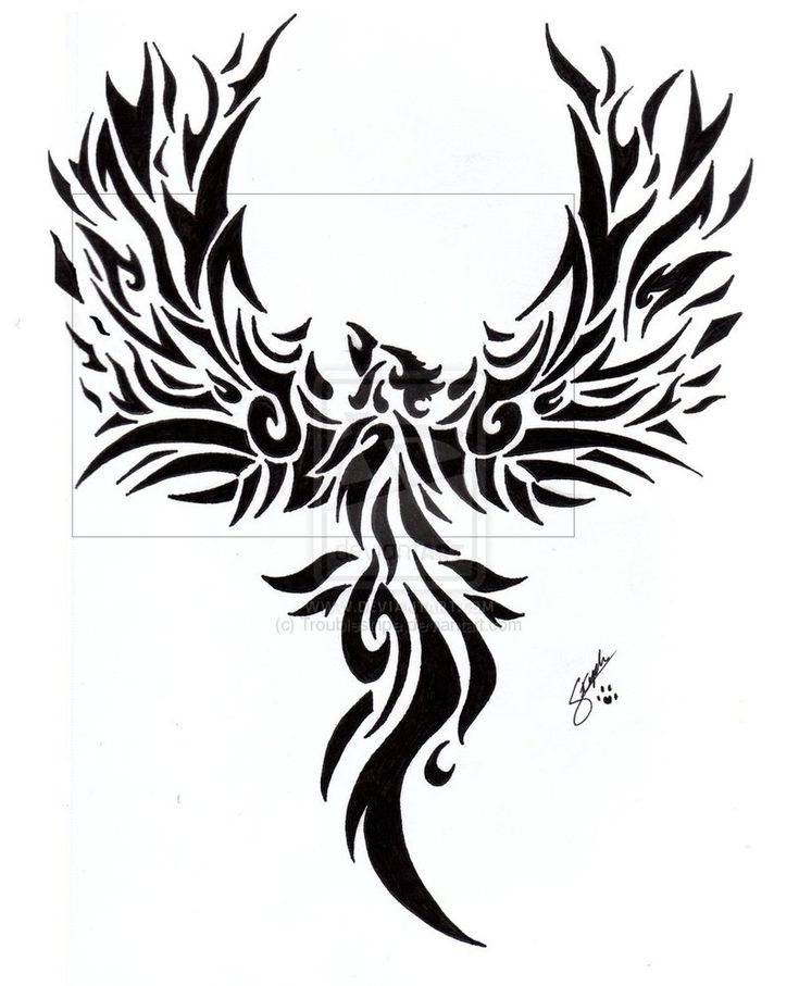 Tribal Phoenix Tattoo by ~Troublestripe on deviantART
