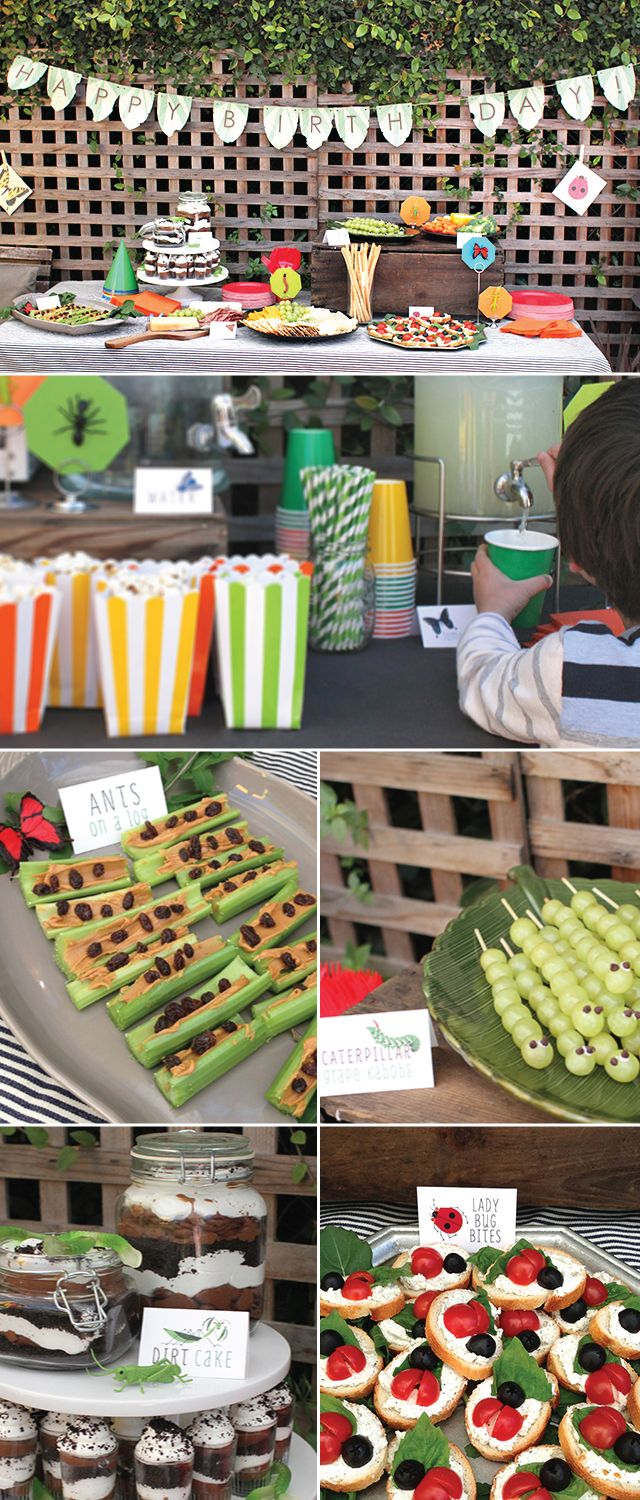 Love the bug theme.  The caterpillar grape skewers & ladybug crackers are a fantastic and easy idea.