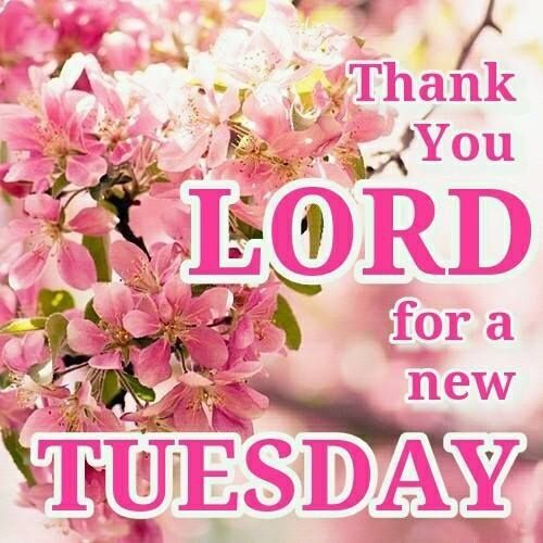 Thank you for a new Tuesday quotes quote god lord days of the week tuesday tuesday quotes happy tuesday