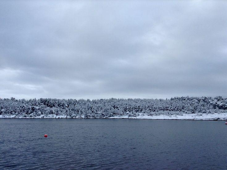 Winter in Norway 🇳🇴 #winter #Norway #Langesund