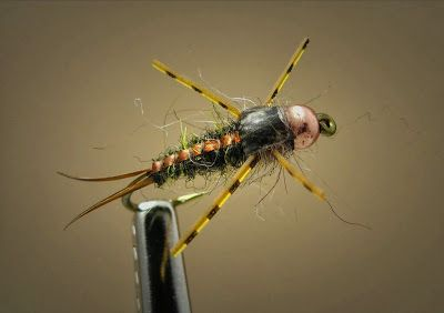 Fly Fish Food -- Fly Tying and Fly Fishing : Cheech's top 5 subsurface patterns of 2013. For more fly fishing info follow and subscribe www.theflyreelguide.com. Also check out the original pinners site and support