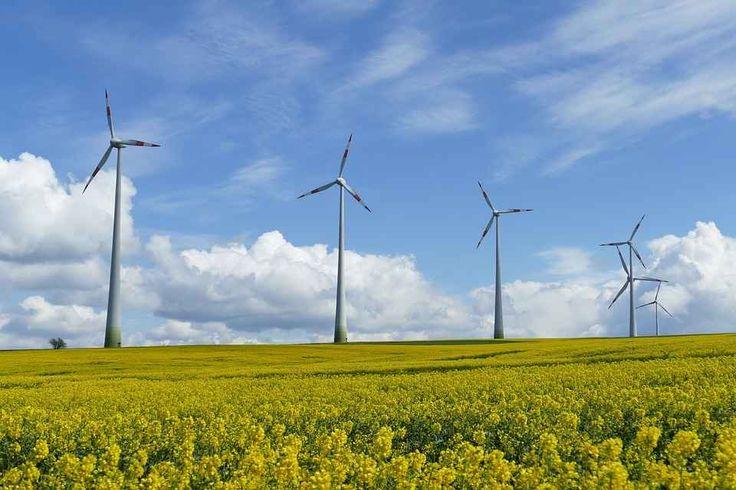 Con l'eolico in Italia può cambiare il vento per economia, salute e lavoro In Italia, fra poco più di dieci anni, si potrebbero risparmiare quasi 50 milioni di barili di petrolio l'anno. E si potrebbe evitare la produzione di 25 milioni di tonnellate di anidride carbonica e #energiaeolica #anev #fontirinnovabili