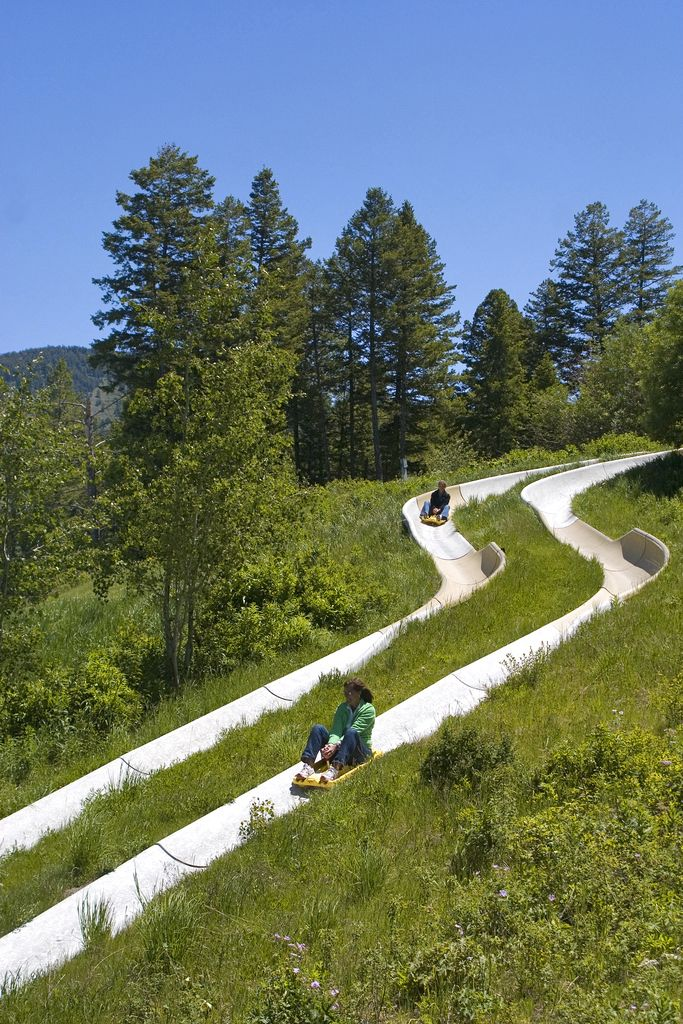 Visit Jackson Hole, Wy and take a ride on the Alpine Slide. Call us today 1-800-329-9205 or visit www.jacksonhole.net