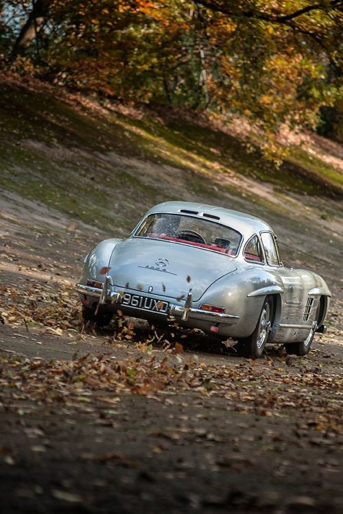 mercedesbenz:  Icons of Style It's not fall yet, but it's always the right time to admire the 300 SL. vondranandre:  Mercedes Benz