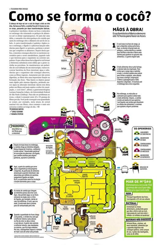 human body infographic - Google Search