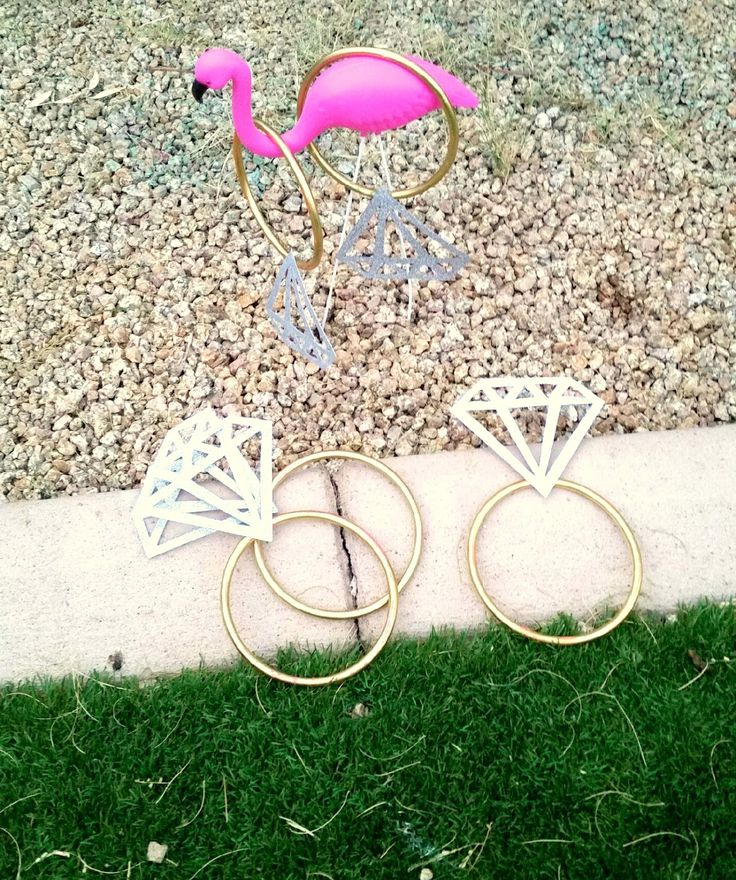 For the Love of Character: Party Crashing - Bachelorette Party in the Desert! Flamingo ring toss
