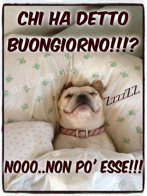 Chi ha detto buongiorno!!!? Nooo... Non po' esse!!!! #buongiorno