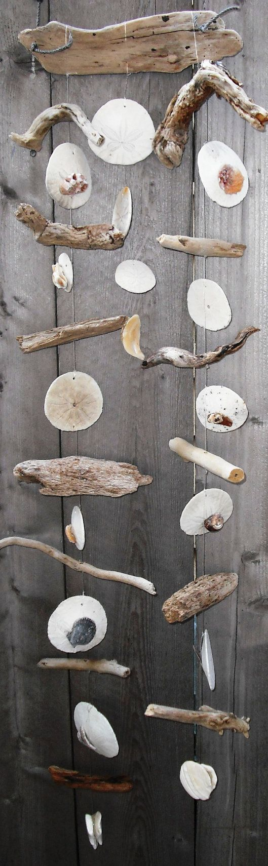 driftwood, sand dollar, and seashell wind chime/mobile