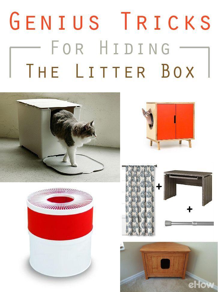 5 genius tricks for hiding your cat 39 s litter box cats