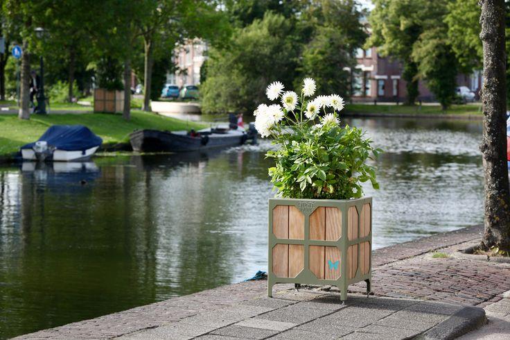 flower basket wood steel