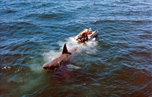 Jaws (1975). Behind the scenes with Bruce the shark.