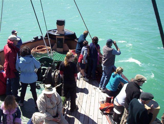 Public Sailings