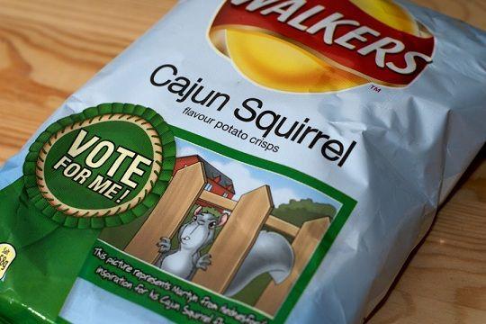 What! Walker's Cajun Squirrel Chips