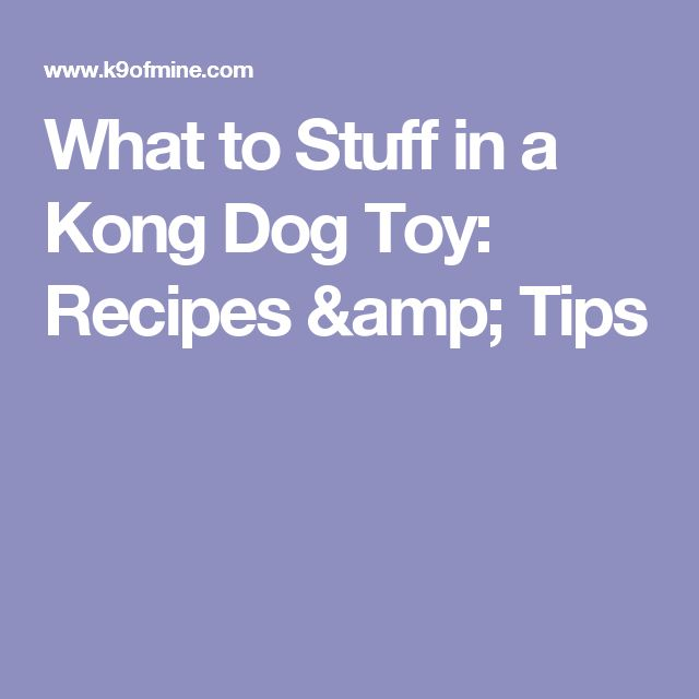 What to Stuff in a Kong Dog Toy: Recipes & Tips