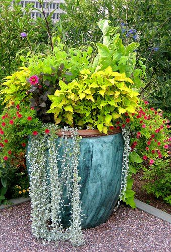 This Stunning Container Is One Of Our Best Container Garden Designs. Simple  Elegance!