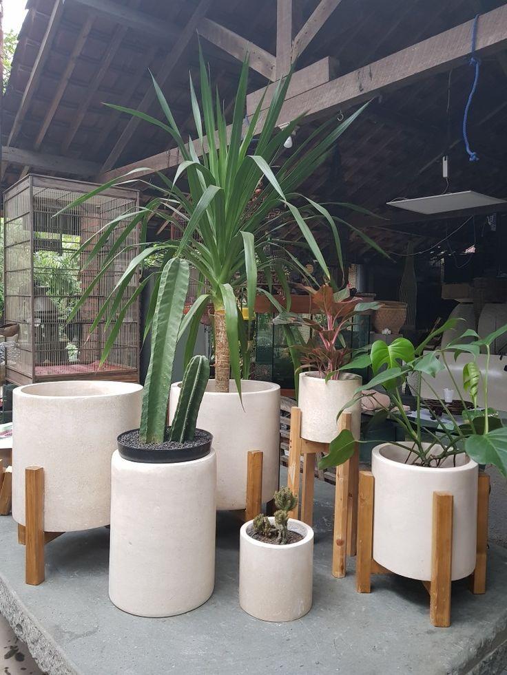 model terbaru dalam tren tanaman. pot dengan kaki kayu