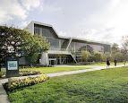 san francisco state university - Google Search