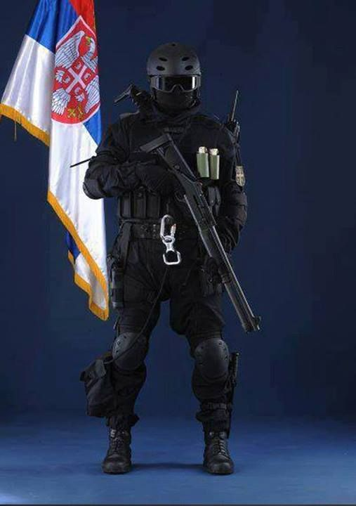 "Counter-terrorist Battalion of the Serbian Special Brigade, nickname ""Falcons""."