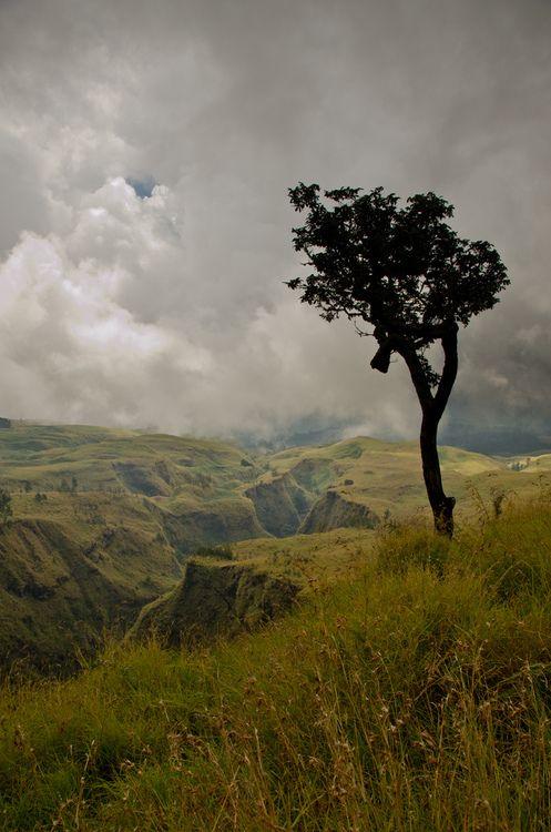 Beautiful scenic view #God's Creation