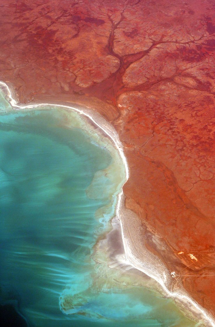 Shark Bay Western Australia - Aerial photo