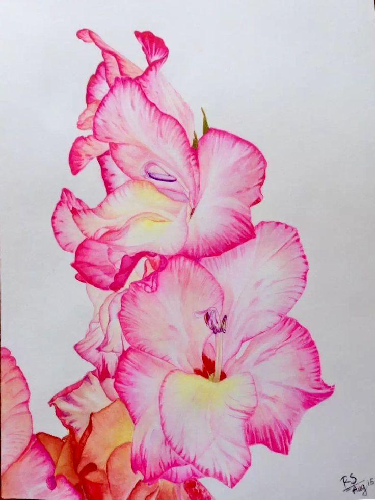 Watercolor Gladiolus Artiste painting