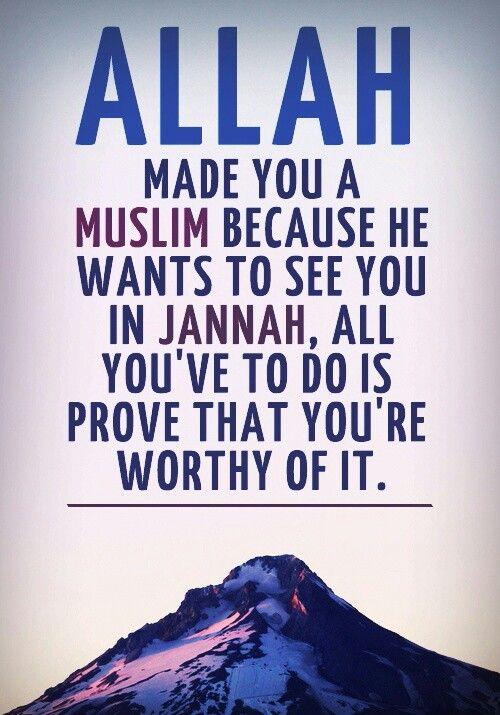 Made you a muslim