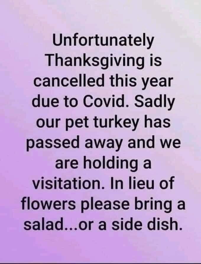 Pin By Elaine On Tee Hee In 2020 Pet Turkey Instagram Posts Thanksgiving