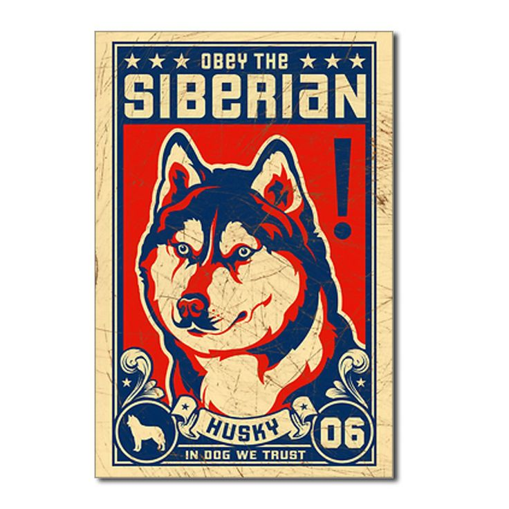 Obey The Siberian Husky Postcards 8 Pack By Obey The Pure Breed Coupons Cafepress In 2021 Siberian Husky Easiest Dogs To Train Husky