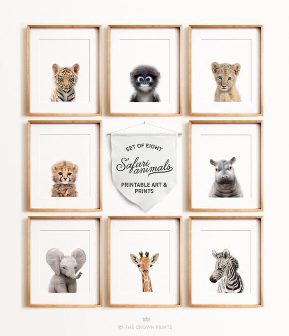 Safari Animal Prints - Set of 8 baby animals (prints and printables) from The Crown Prints