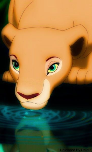 characters in the lion king movie nala and simba silhouette