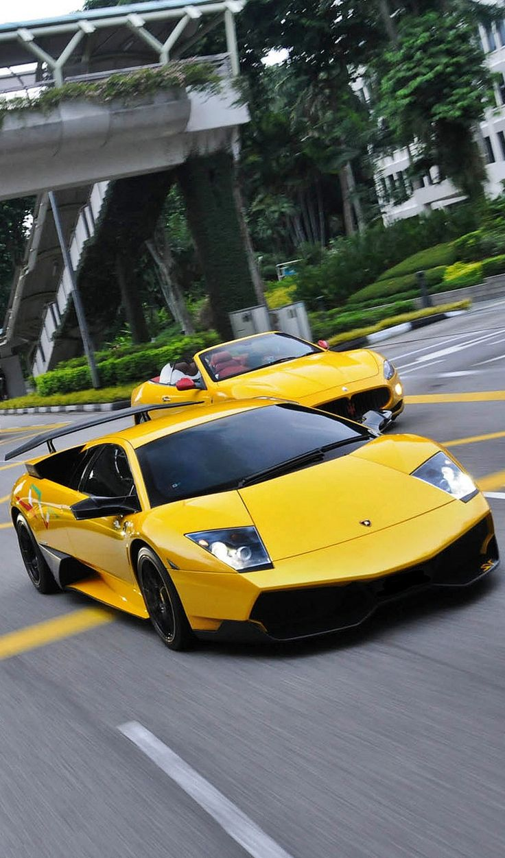 Lamborghini murcielago lamborghini carsexpensive carssports