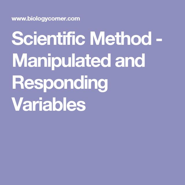 Sector Area Worksheet Best  Control Variable Ideas On Pinterest  Teaching Scientific  Simplify Algebra Worksheet Excel with 1st Grade Sentences Worksheets Excel This Worksheet Can Also Be Used As An Assessment To Determine Understanding  About The Scientific Method Slope Intercept Form Worksheets 8th Grade