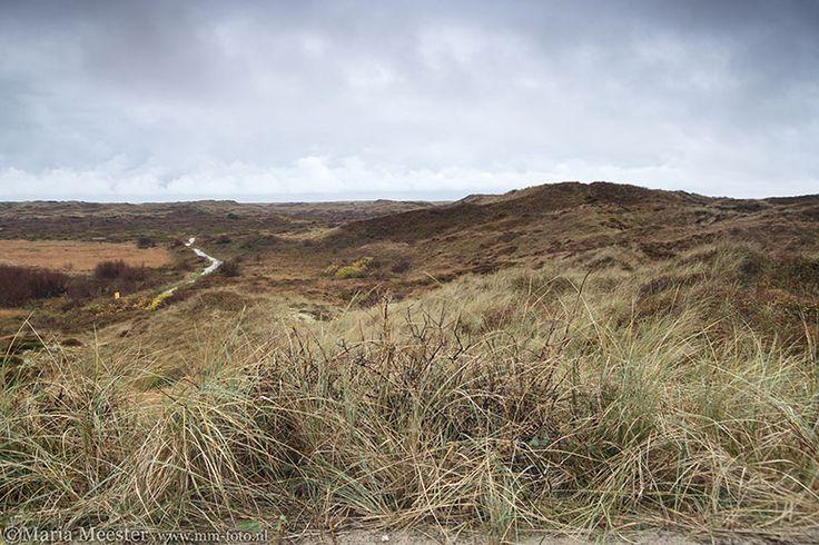 Duinlandschap op Texel.