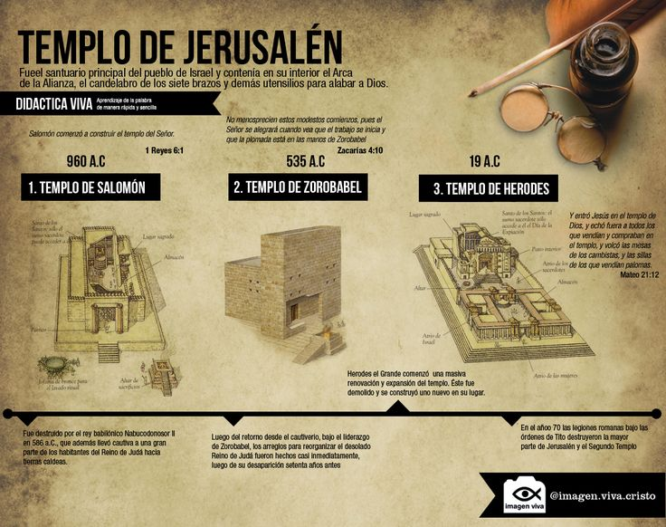 Infografias   imagenviva