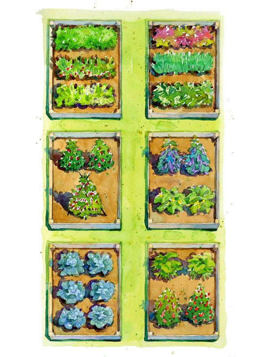296 best images about garden stuff on pinterest garden for Raised bed vegetable garden layout