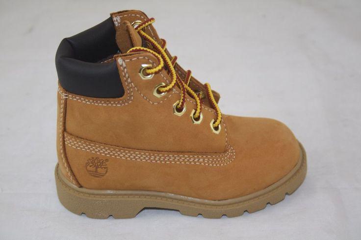 Absolutely Wear Shoes Chris D Elia