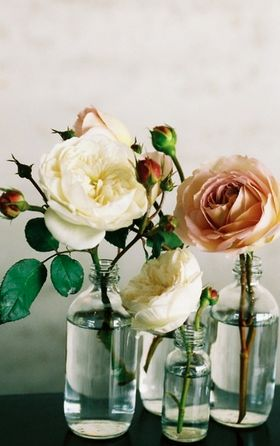 Love this - Single garden roses in clear bottles. So simple but so pretty. ##roses #diy