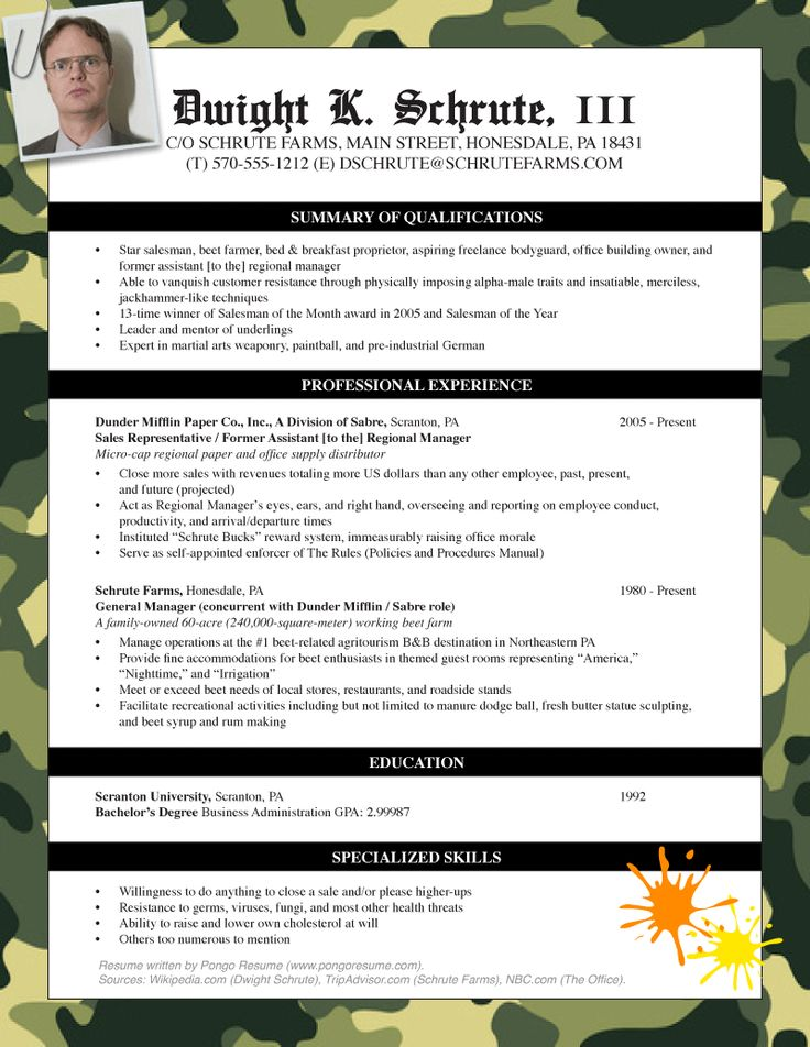 generic useless resume pongo blog dwight schrute Home Design - dwight schrute resume
