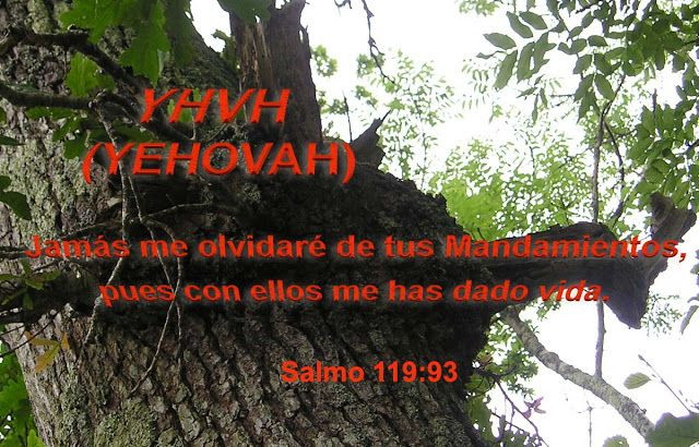 """Hablando acerca de Jesus Cristo.: """"Yo Soy YHVH (YEHOVAH) tu Todopoderoso"""""""