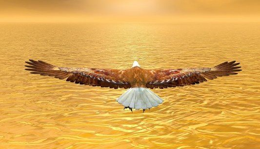 Is Spreading Your Wings Your Next Growth Strategy