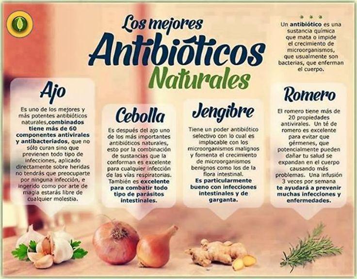 Productos Gourmet & Delicatessen Especialistas gastronómicos : Los mejores antibióticos naturales