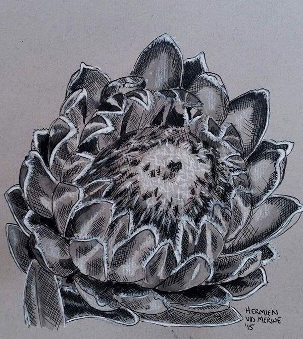 Hermien van der Merwe; Title: Fynbos:  Vry gemaak (Made free) Medium: Pen-and-Ink drawing on paper with oil paint background Size: 200 x 200mm