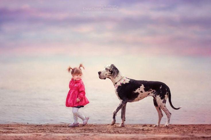 15 pequenas crianças com os seus amigos cães de grande porte - Vamos lá Portugal