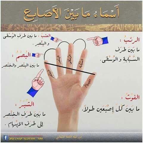 أسماء مابين الأصابع