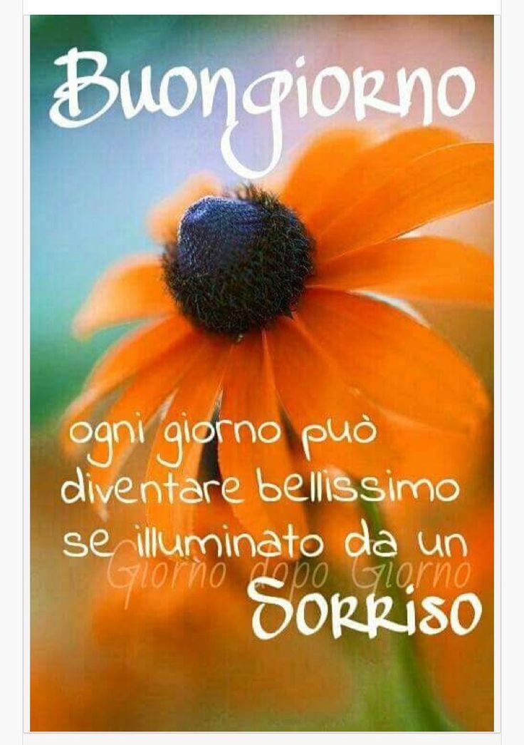 520 best immagini buongiorno images on pinterest good for Top immagini buongiorno