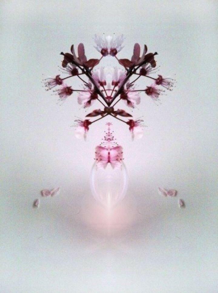 Kaleidoscopic cherry / photo & digital Roberta Cleopazzo